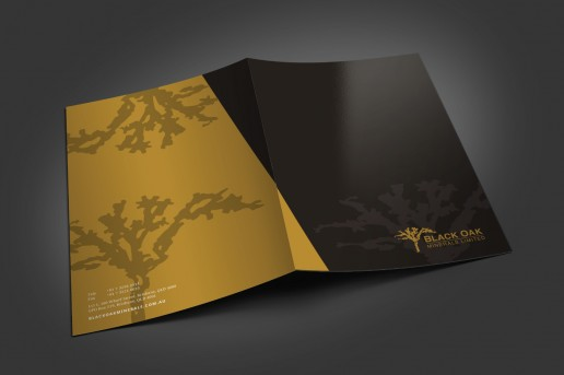 Image showing a preview of Black Oak Minerals brochure that Elites Wave designed.
